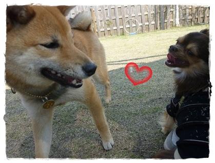 ツナ&杏ちゃん