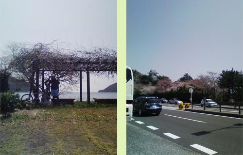 琵琶湖北部