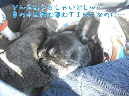 2011.12.8 9