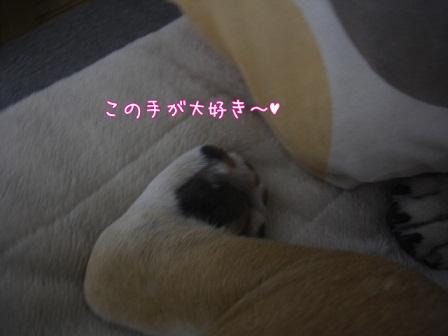 2012.6.7 4