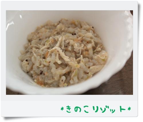 IMG_9878-.jpg