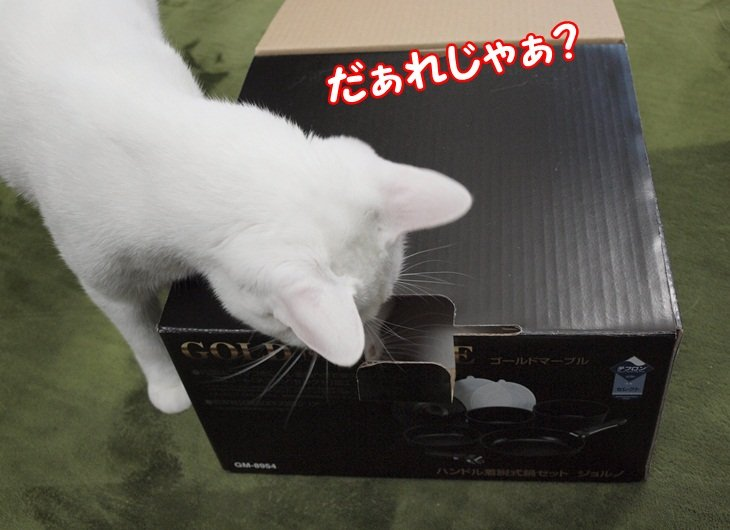 1listbox20130304 (4)