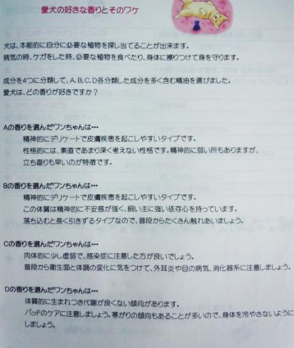 20130323q.jpg