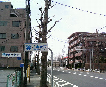 P1006967.jpg