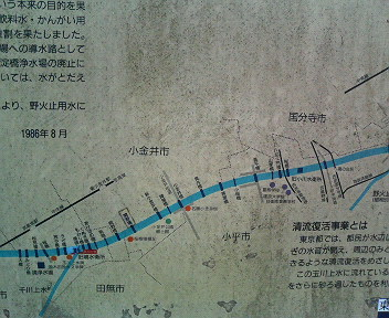 P1007011.jpg