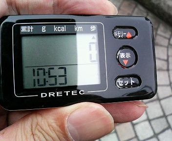 P1007040.jpg