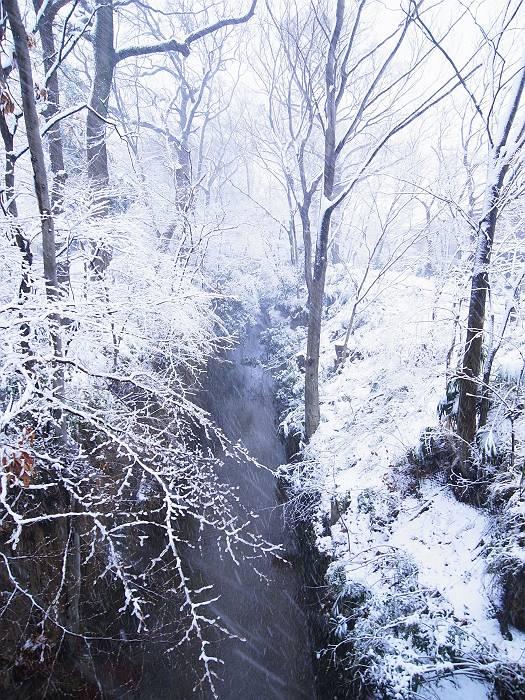 雪_999_3-s