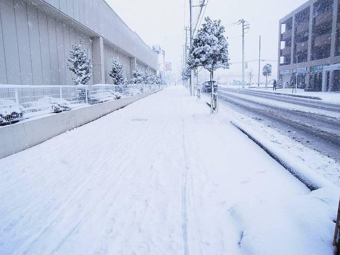 雪_999_4-s