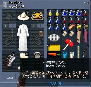 mabinogi_2011_07_28_030.jpg