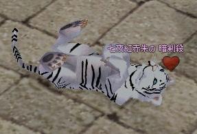 mabinogi_2011_09_10_002.jpg