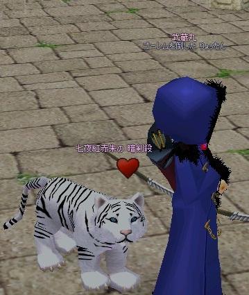 mabinogi_2011_09_10_003.jpg
