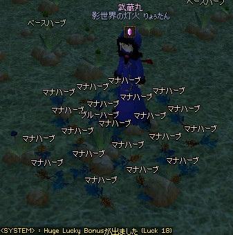 mabinogi_2011_09_14_018.jpg