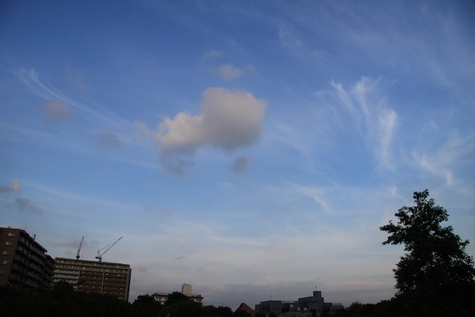 20110724IMG_0228.jpg