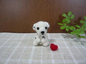 羊毛5 506