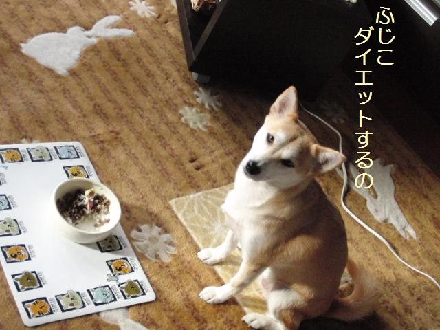 037_20101027140058.jpg