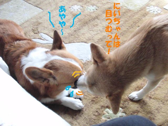 040_20101027140224.jpg