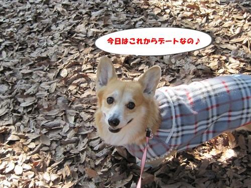 芦花公園デート 007