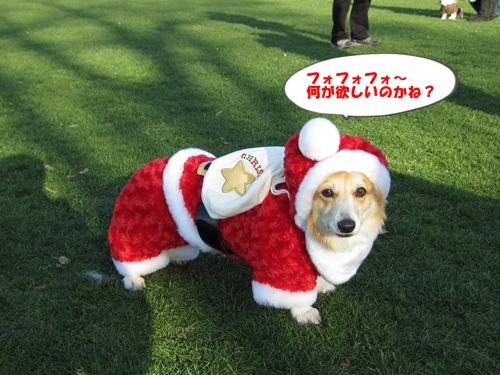 道満クリスマスイベント 127