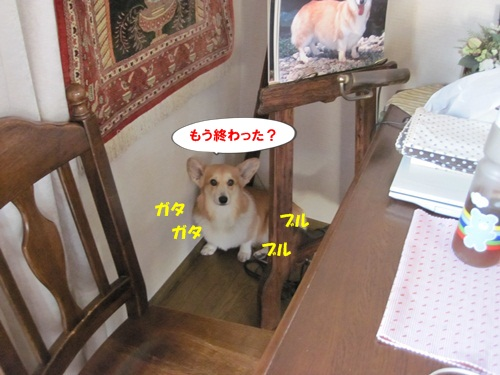 IMG_1413.jpg