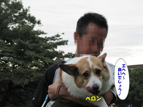 IMG_3026_20121014091013.jpg
