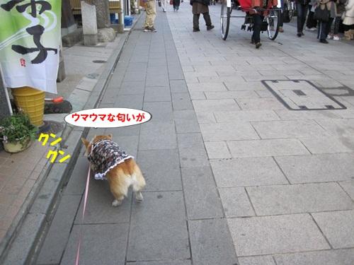 IMG_4207_20111223082711.jpg