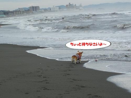IMG_9000.jpg