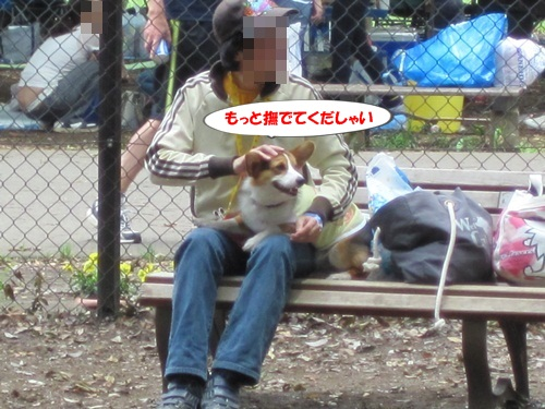 IMG_9127_20120624102931.jpg