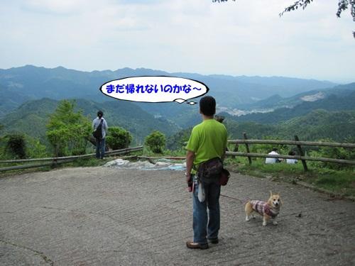 IMG_9456_20120701161401.jpg