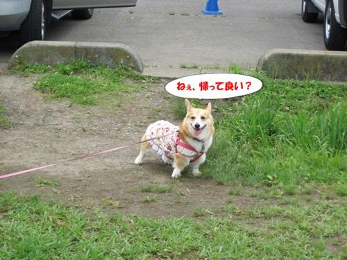 IMG_9571.jpg