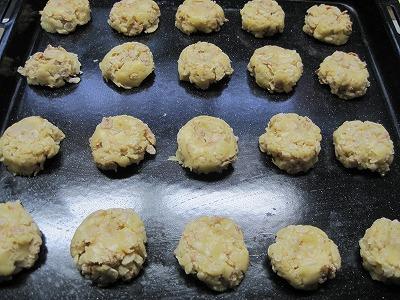 IMG_0087cookie.jpg