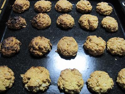 IMG_0092cookie.jpg