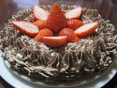 【瑠沙の芸術ケーキ】『チョコレモンバニラシフォンケーキ』