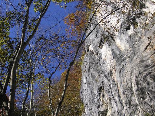 カエル岩の紅葉