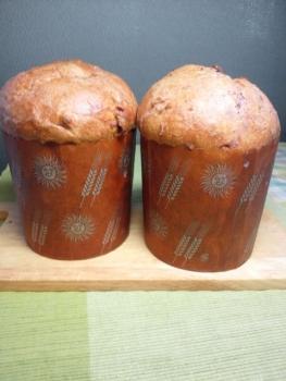 20131216紫芋パネトーネ0