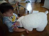 100821_羊さんと (3)