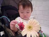 100826_お花と (4)
