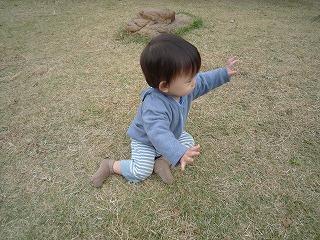 101114_どんぐり公園 (10)
