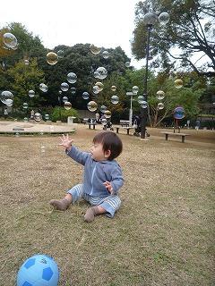 101114_どんぐり公園 (3)