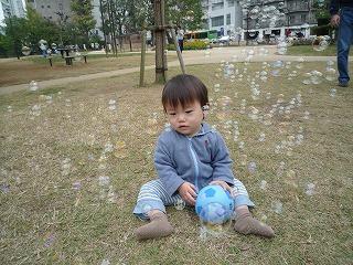 101114_どんぐり公園