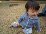101114_どんぐり公園 (11)