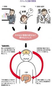 image1 - コピー (4)