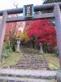 20141116_神社01
