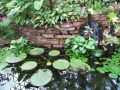 20141130_植物園04