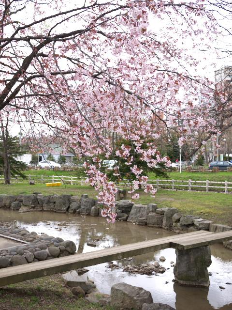 nakajima-park_01t.jpg