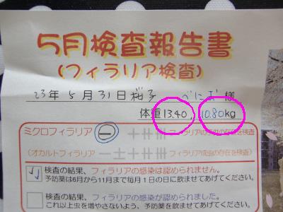 s3uuのコピー