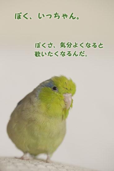 IMG_7866.jpg