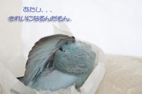_DSC8639-2.jpg