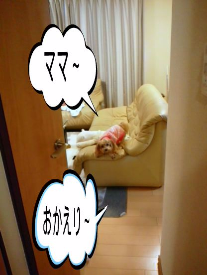 DSC_3873.jpg