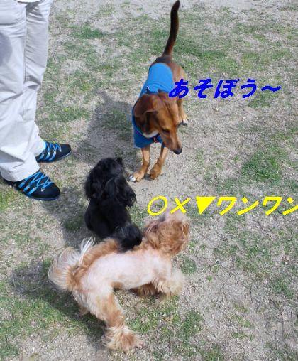 DSC_5450.jpg