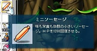 SS003594.jpg